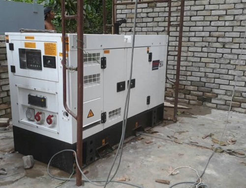 Generator At Chicken Poultry Farm