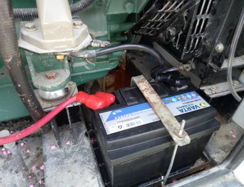 Genset Batteries